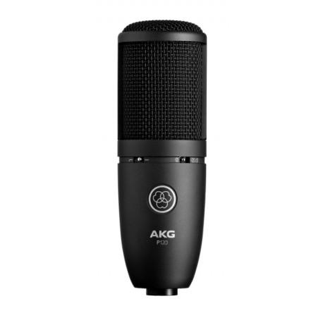 P120 High-Performance General Purpose Recording Microphone
